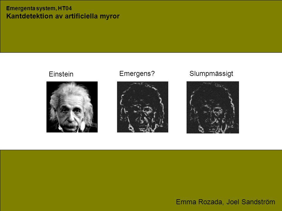 Emergenta system, HT04 Kantdetektion av artificiella myror Emma Rozada, Joel Sandström Emergens Slumpmässigt Einstein