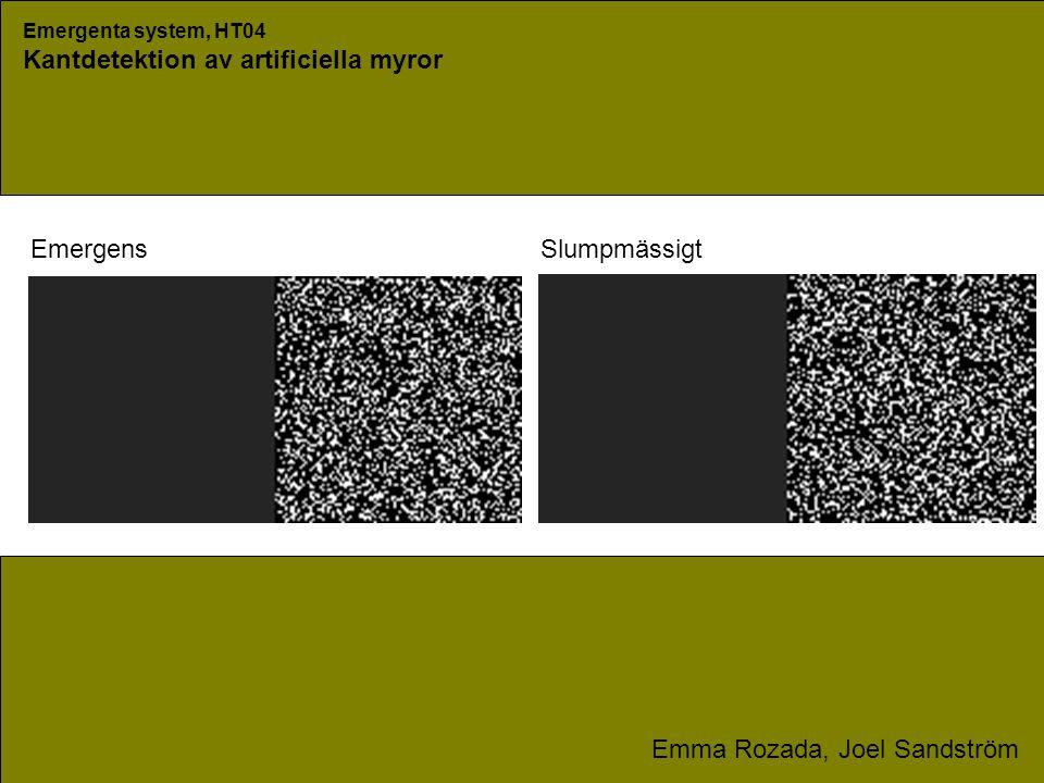 Emergenta system, HT04 Kantdetektion av artificiella myror Emma Rozada, Joel Sandström SlumpmässigtEmergens
