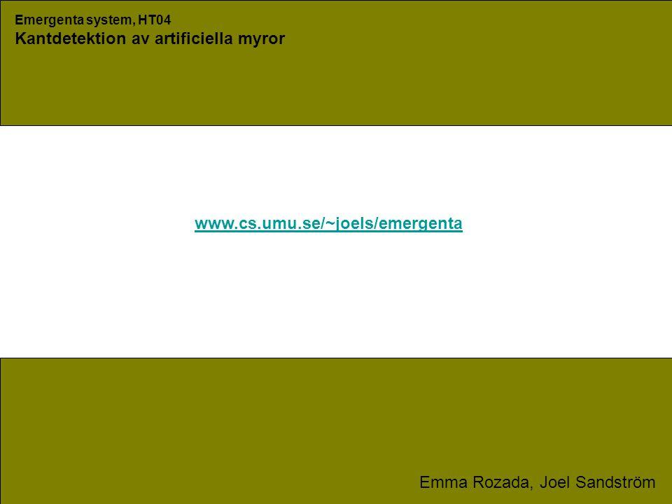 Emergenta system, HT04 Kantdetektion av artificiella myror Emma Rozada, Joel Sandström www.cs.umu.se/~joels/emergenta