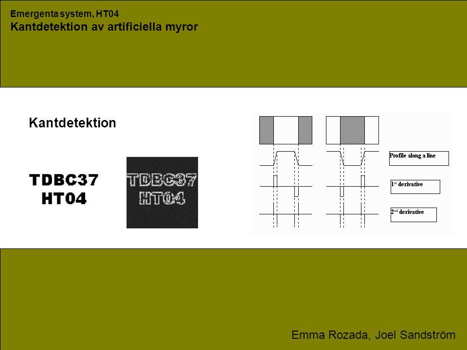 Emergenta system, HT04 Kantdetektion av artificiella myror Emma Rozada, Joel Sandström Kantdetektion