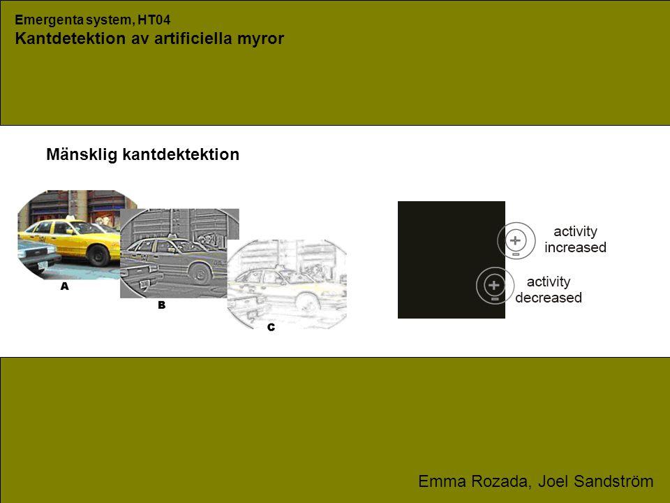 Emergenta system, HT04 Kantdetektion av artificiella myror Emma Rozada, Joel Sandström Mänsklig kantdektektion