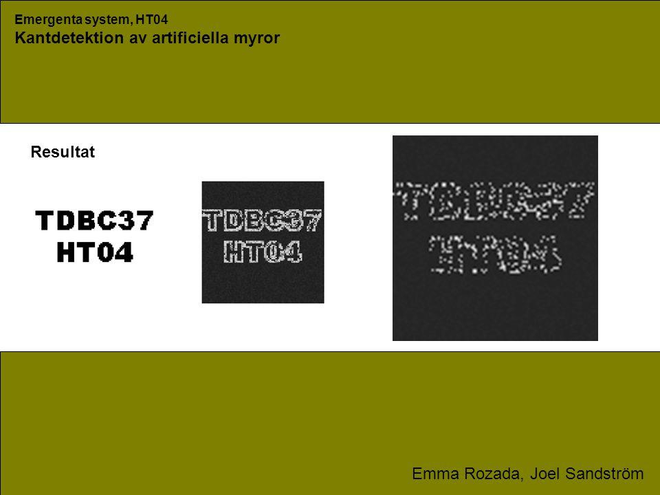 Emergenta system, HT04 Kantdetektion av artificiella myror Emma Rozada, Joel Sandström Minne