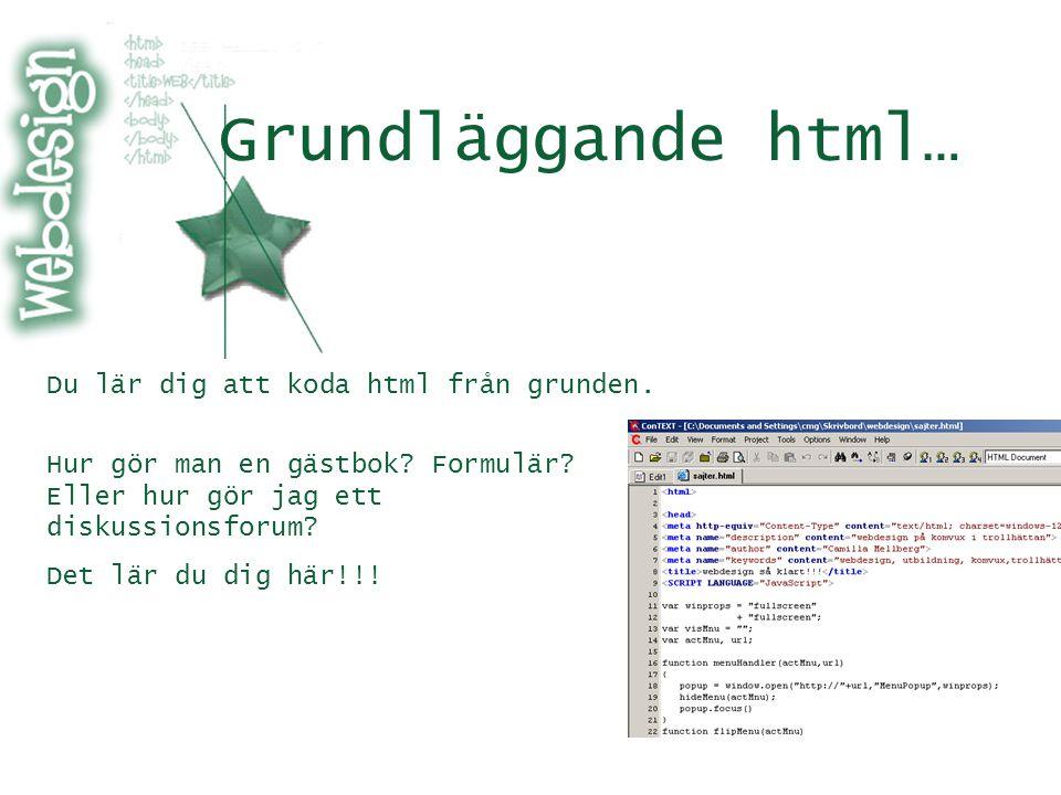 Grundläggande html… Du lär dig att koda html från grunden.