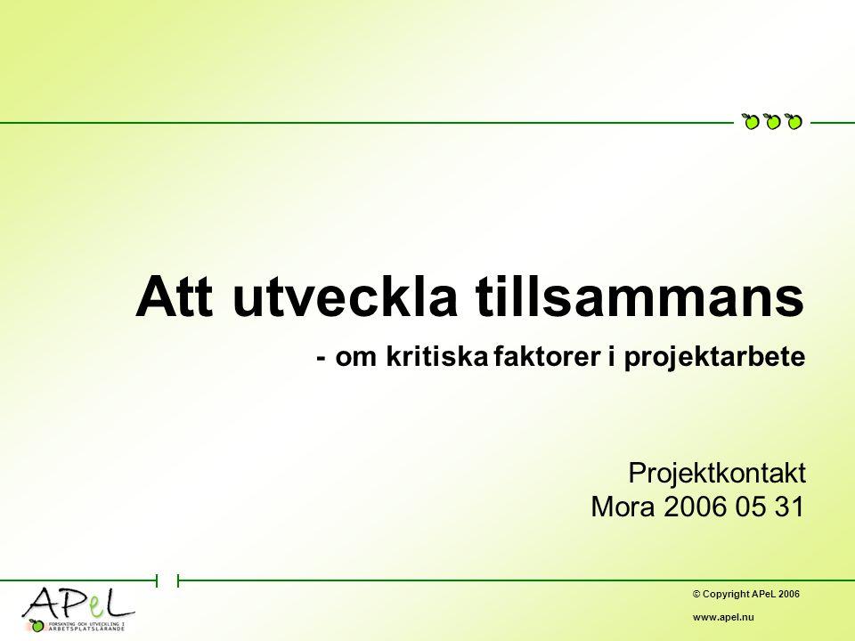 © Copyright APeL 2006 www.apel.nu Att utveckla tillsammans - om kritiska faktorer i projektarbete Projektkontakt Mora 2006 05 31