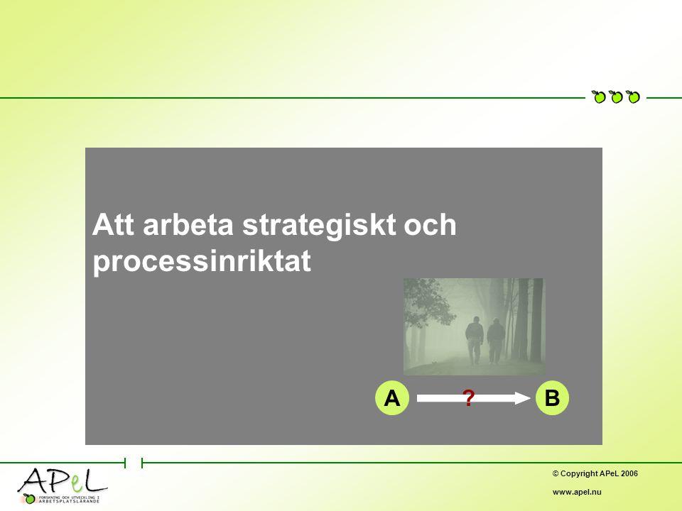 © Copyright APeL 2006 www.apel.nu Att arbeta strategiskt och processinriktat AB