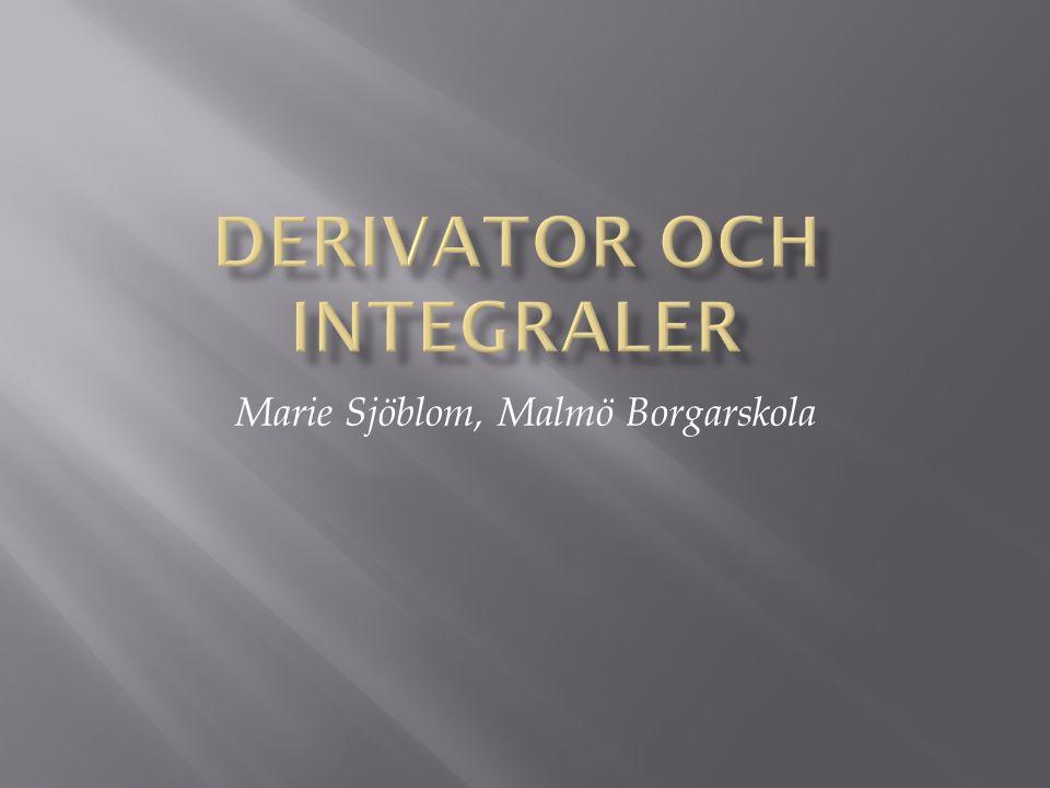 Marie Sjöblom, Malmö Borgarskola