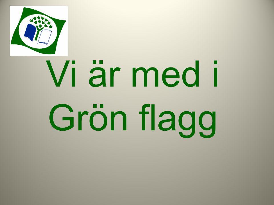 Vi är med i Grön flagg