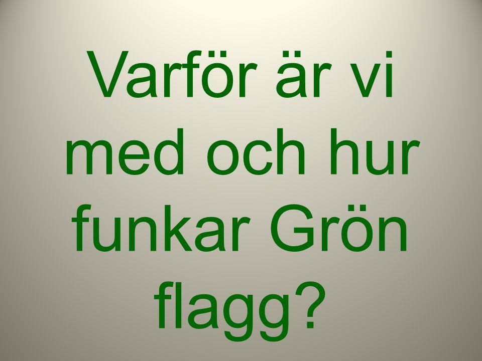 Varför är vi med och hur funkar Grön flagg?