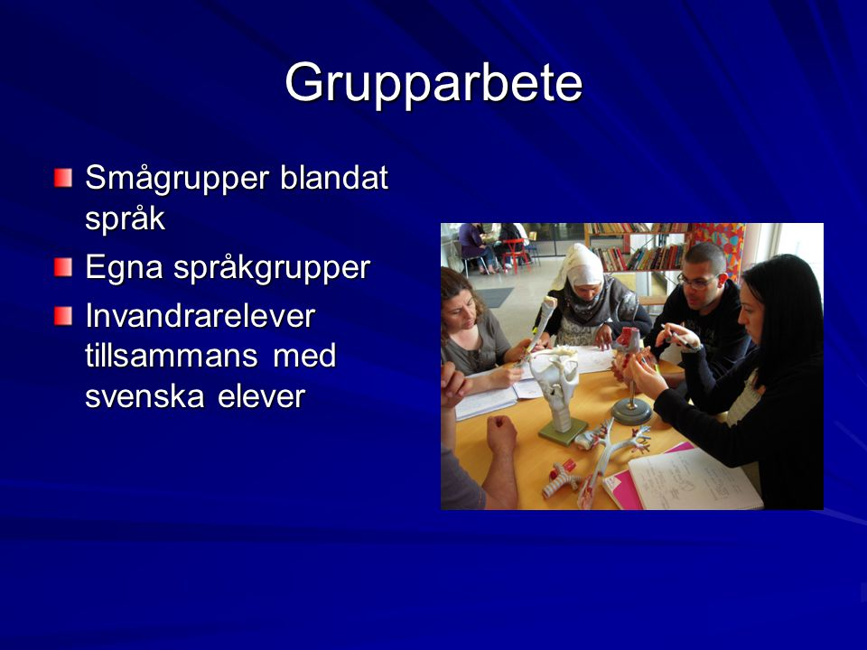 Grupparbete Smågrupper blandat språk Egna språkgrupper Invandrarelever tillsammans med svenska elever