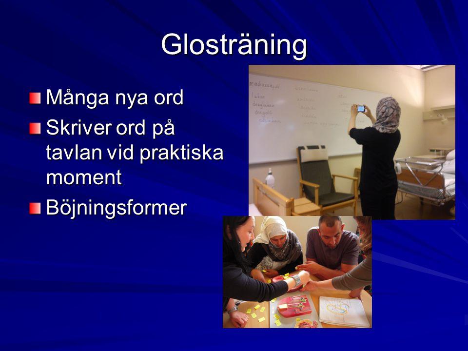Glosträning Många nya ord Skriver ord på tavlan vid praktiska moment Böjningsformer