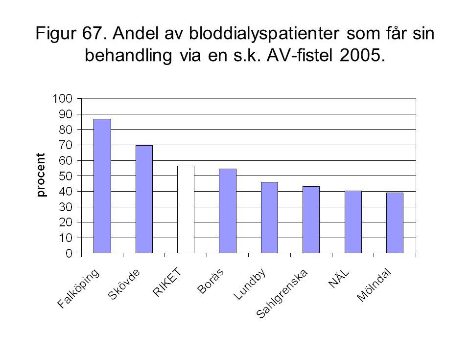 Figur 67. Andel av bloddialyspatienter som får sin behandling via en s.k. AV-fistel 2005.