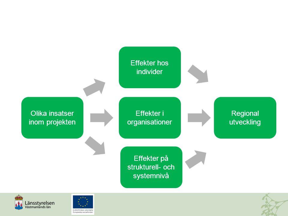 Olika insatser inom projekten Effekter på strukturell- och systemnivå Effekter i organisationer Effekter hos individer Regional utveckling