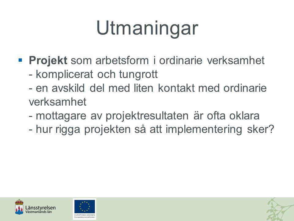 Utmaningar  Projekt som arbetsform i ordinarie verksamhet - komplicerat och tungrott - en avskild del med liten kontakt med ordinarie verksamhet - mo