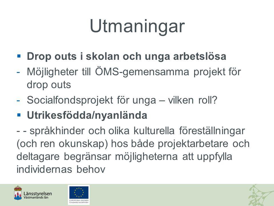 Utmaningar  Drop outs i skolan och unga arbetslösa -Möjligheter till ÖMS-gemensamma projekt för drop outs -Socialfondsprojekt för unga – vilken roll?
