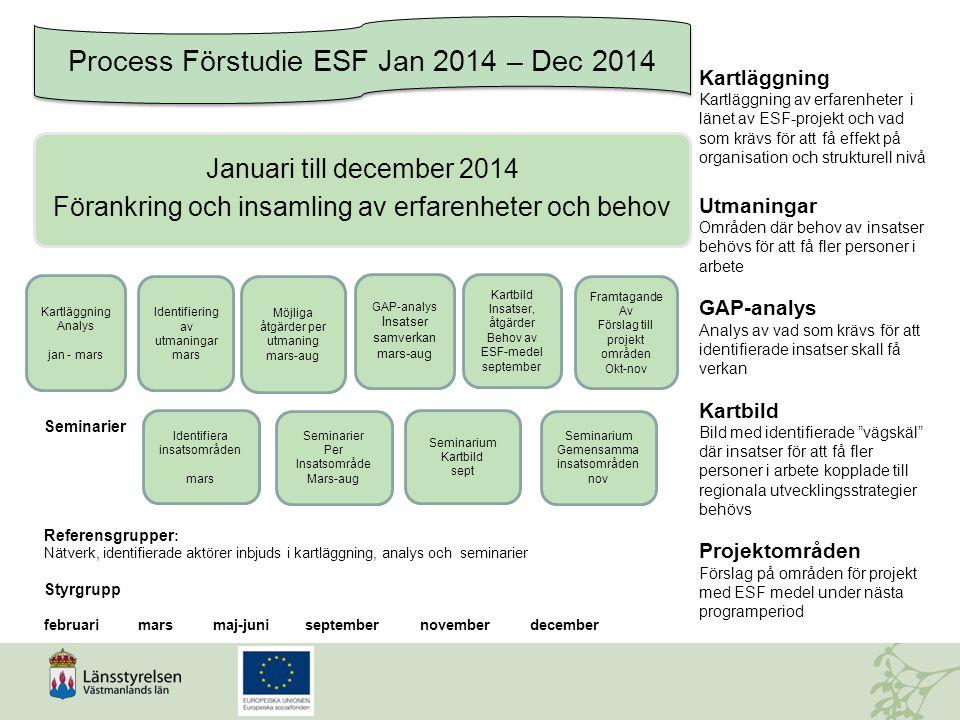 Process Förstudie ESF Jan 2014 – Dec 2014 Januari till december 2014 Förankring och insamling av erfarenheter och behov Kartläggning Analys jan - mars