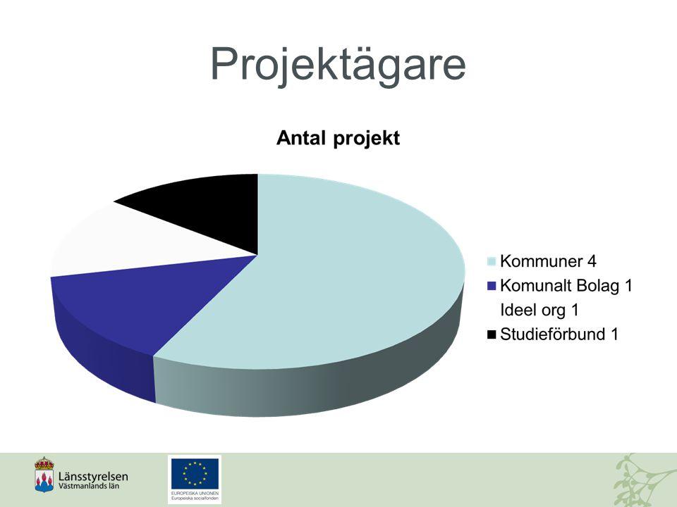 Förstudie spår 2  Skapa förutsättningar för samverkan på ÖMS- nivå för genomförande av Socialfonden under 2014-2020 1.Identifiera områden och former för ÖMS- samverkan och projektsatsningar 2.Skapa ÖMS-gemensamma satsningar 3.Utarbeta ÖMS-gemensamma former för återföring av projektresultat 4.Identifiera behov av processtöd