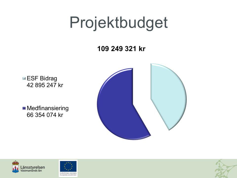 Ökad samverkan mellan strukturfonderna Socialfonden ska samverkan med de övriga tre struktur- och investeringsfonderna:  Europeiska regionala utvecklingsfonden  Europeiska jordbruksfonden för landsbygdsutveckling  Europeiska havs- och fiskerifonden