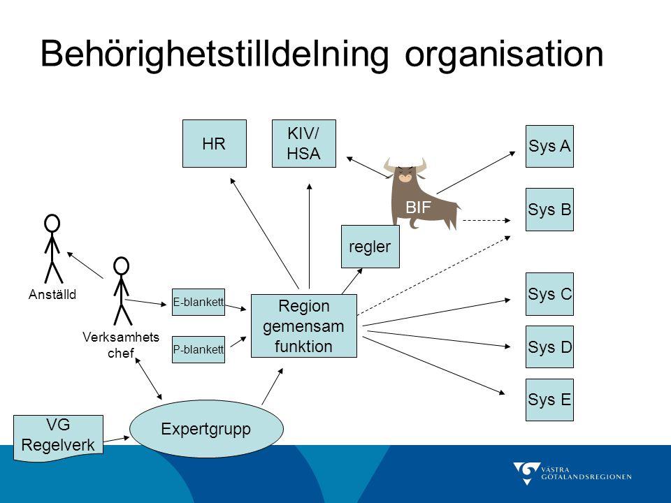 Behörighetstilldelning organisation Region gemensam funktion Sys A Sys B Sys C Sys D Sys E BIF KIV/ HSA HR Verksamhets chef Anställd E-blankett P-blan