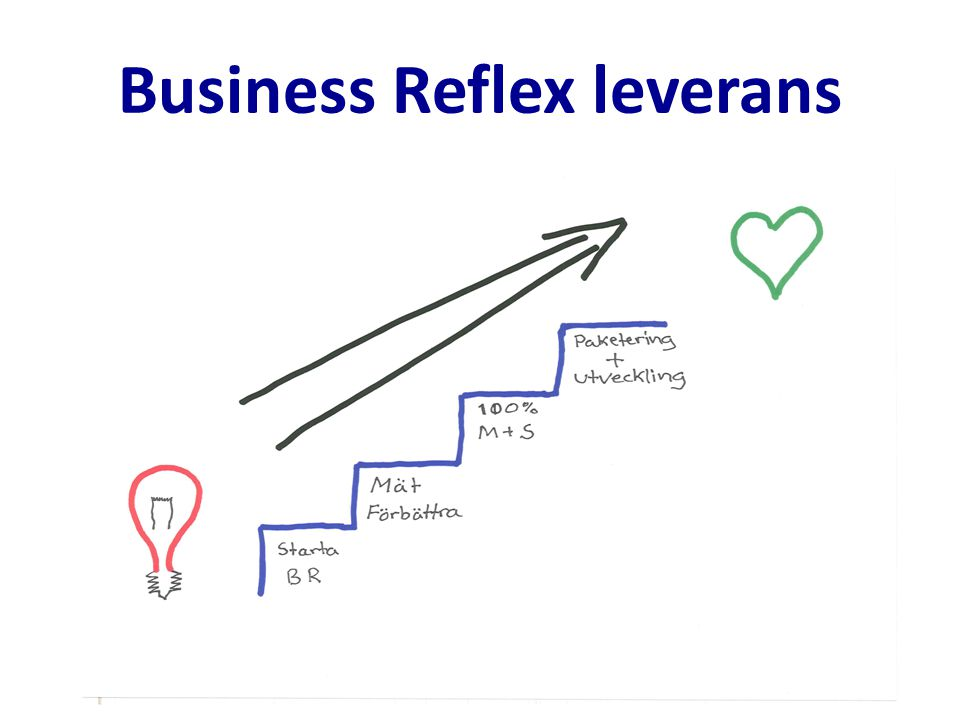 Business Reflex leverans