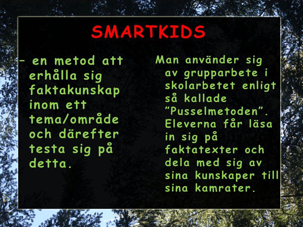 SMARTKIDS – en metod att erhålla sig faktakunskap inom ett tema/område och därefter testa sig på detta. Man använder sig av grupparbete i skolarbetet