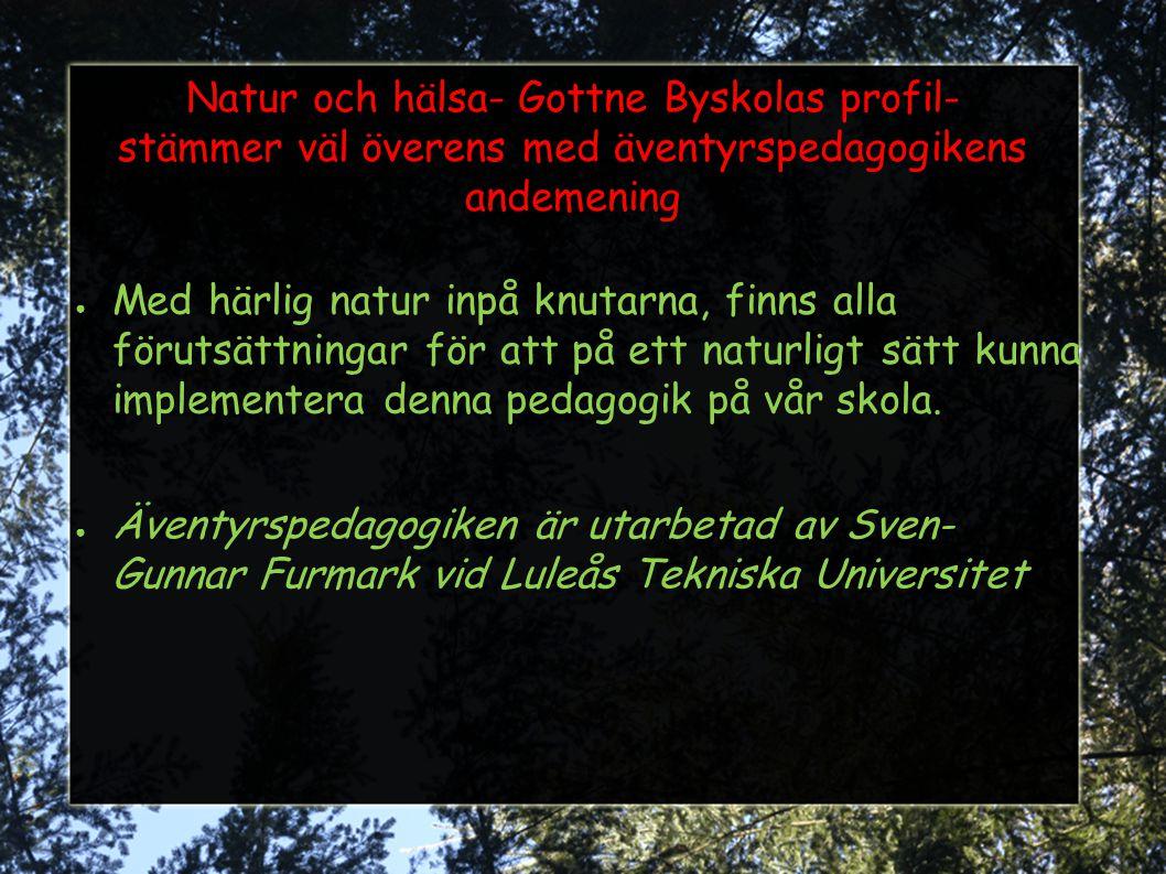 Natur och hälsa- Gottne Byskolas profil- stämmer väl överens med äventyrspedagogikens andemening ● Med härlig natur inpå knutarna, finns alla förutsät
