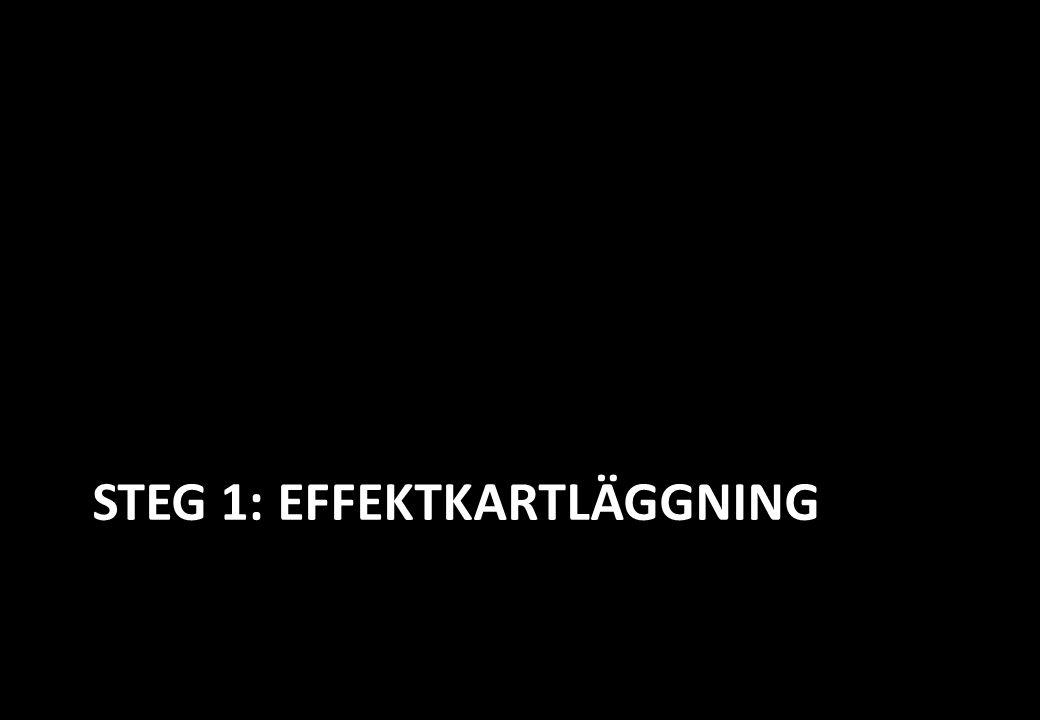 STEG 1: EFFEKTKARTLÄGGNING