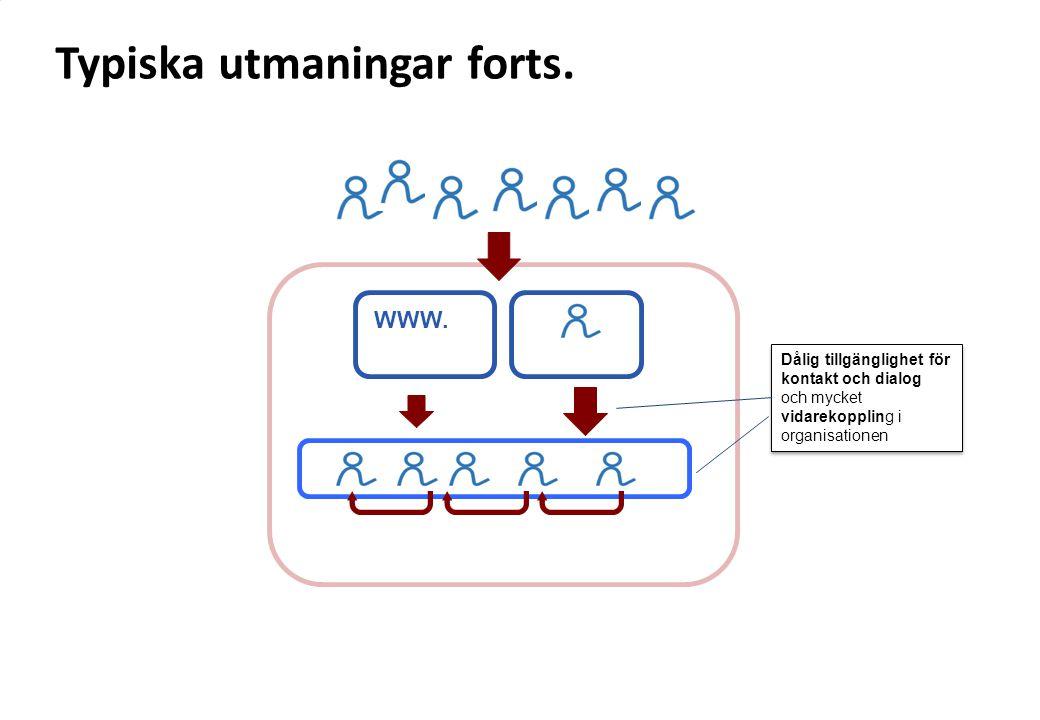 WWW. Dålig tillgänglighet för kontakt och dialog och mycket vidarekoppling i organisationen Dålig tillgänglighet för kontakt och dialog och mycket vid