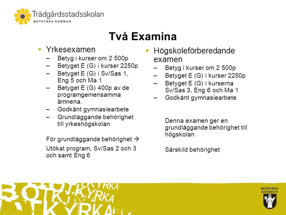 Två Examina  Yrkesexamen –Betyg i kurser om 2 500p –Betyget E (G) i kurser 2250p –Betyget E (G) i Sv/Sas 1, Eng 5 och Ma 1 –Betyget E (G) 400p av de