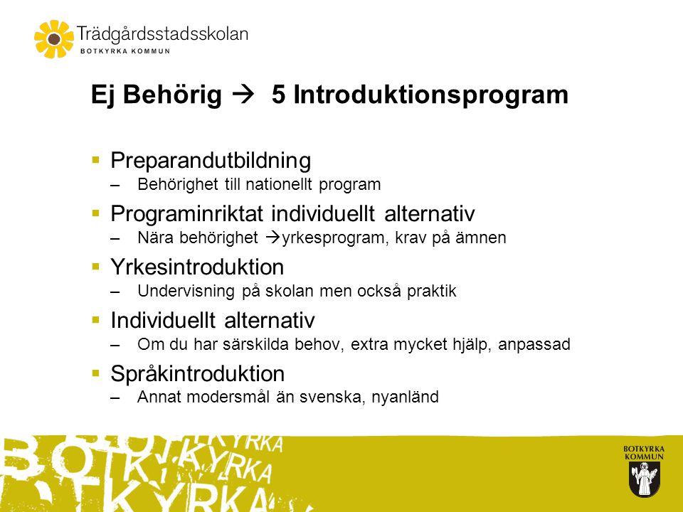 Ej Behörig  5 Introduktionsprogram  Preparandutbildning –Behörighet till nationellt program  Programinriktat individuellt alternativ –Nära behörigh