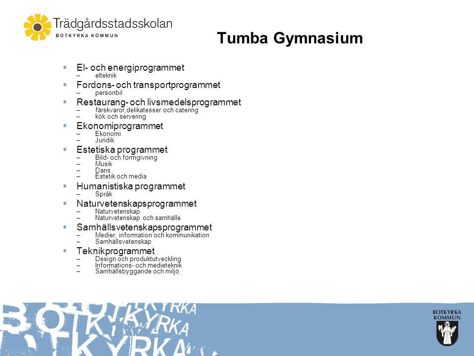 Tumba Gymnasium  El- och energiprogrammet –elteknik  Fordons- och transportprogrammet –personbil  Restaurang- och livsmedelsprogrammet –färskvaror,