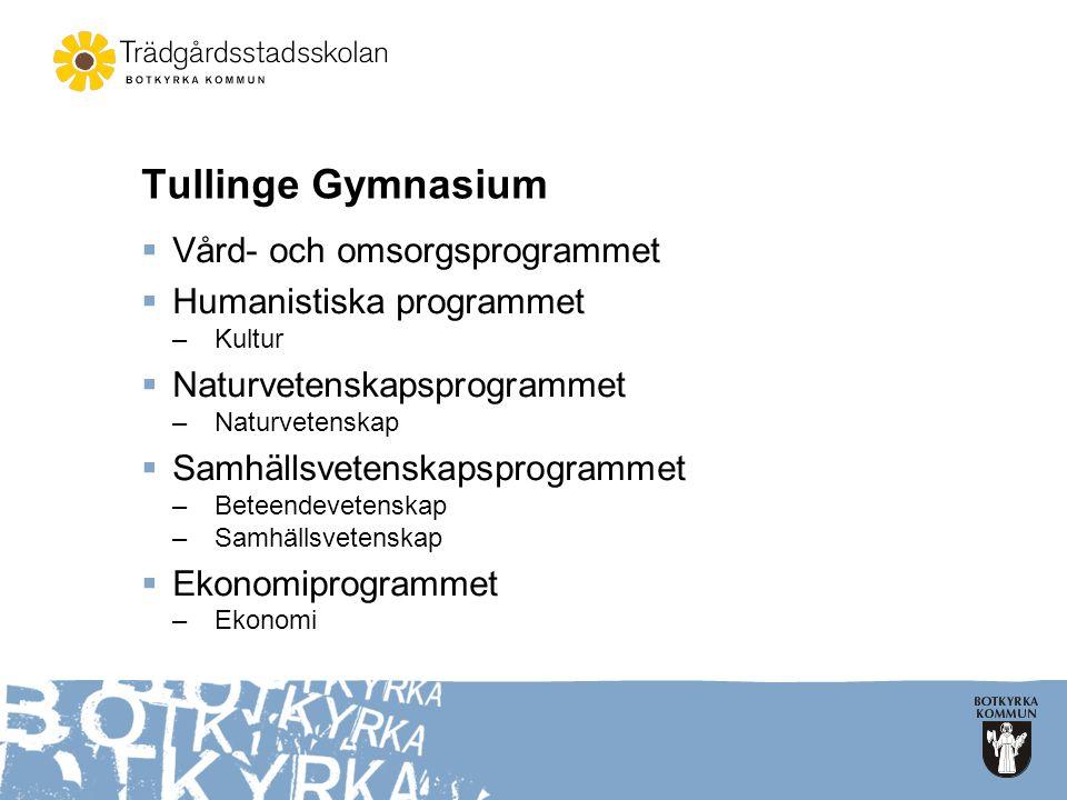 Tullinge Gymnasium  Vård- och omsorgsprogrammet  Humanistiska programmet –Kultur  Naturvetenskapsprogrammet –Naturvetenskap  Samhällsvetenskapspro