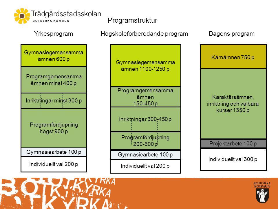 Yrkesprogram BABygg- och anläggningsprogrammet BFBarn- och fritidsprogrammet EEEl- och energiprogrammet FTFordon- och transportprogrammet HAHandels- och administrationsprogrammet HTHotell- och turismprogrammet HVHantverksprogrammet INIndustritekniska programmet NBNaturbruksprogrammet RLRestaurang- och livsmedelsprogrammet VFVVS- och fastighetsprogrammet VOVård- och omsorgsprogrammet