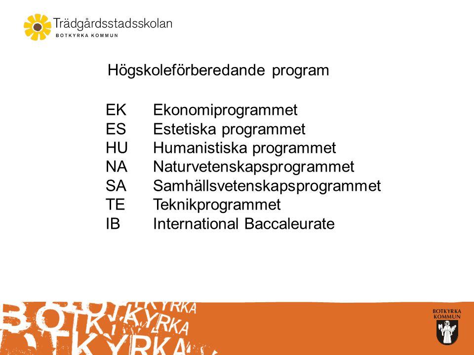 Tumba Gymnasium  El- och energiprogrammet –elteknik  Fordons- och transportprogrammet –personbil  Restaurang- och livsmedelsprogrammet –färskvaror,delikatesser och catering –kök och servering  Ekonomiprogrammet –Ekonomi –Juridik  Estetiska programmet –Bild- och formgivning –Musik –Dans –Estetik och media  Humanistiska programmet –Språk  Naturvetenskapsprogrammet –Naturvetenskap –Naturvetenskap och samhälle  Samhällsvetenskapsprogrammet –Medier, information och kommunikation –Samhällsvetenskap  Teknikprogrammet –Design och produktutveckling –Informations- och medieteknik –Samhällsbyggande och miljö