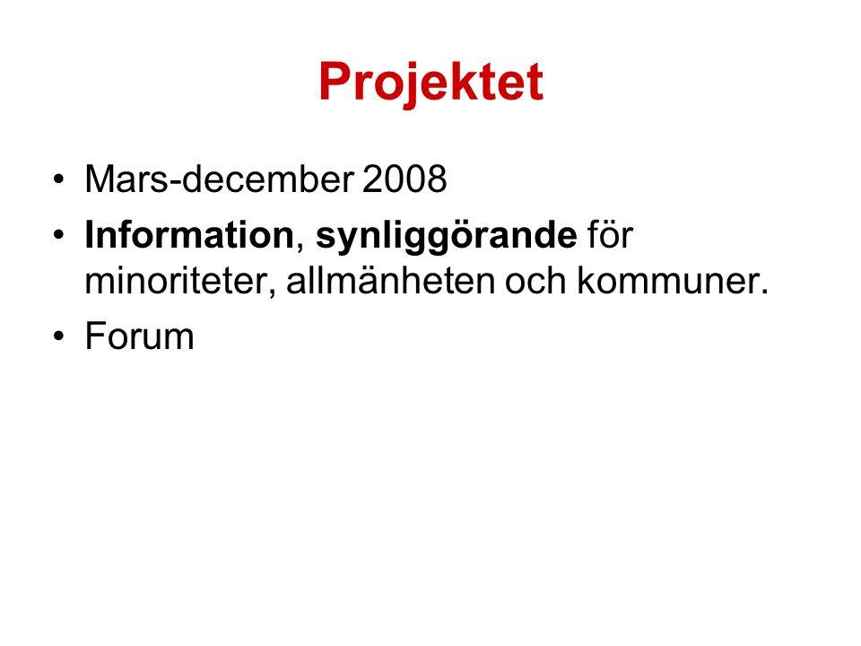 Projektet Mars-december 2008 Information, synliggörande för minoriteter, allmänheten och kommuner.