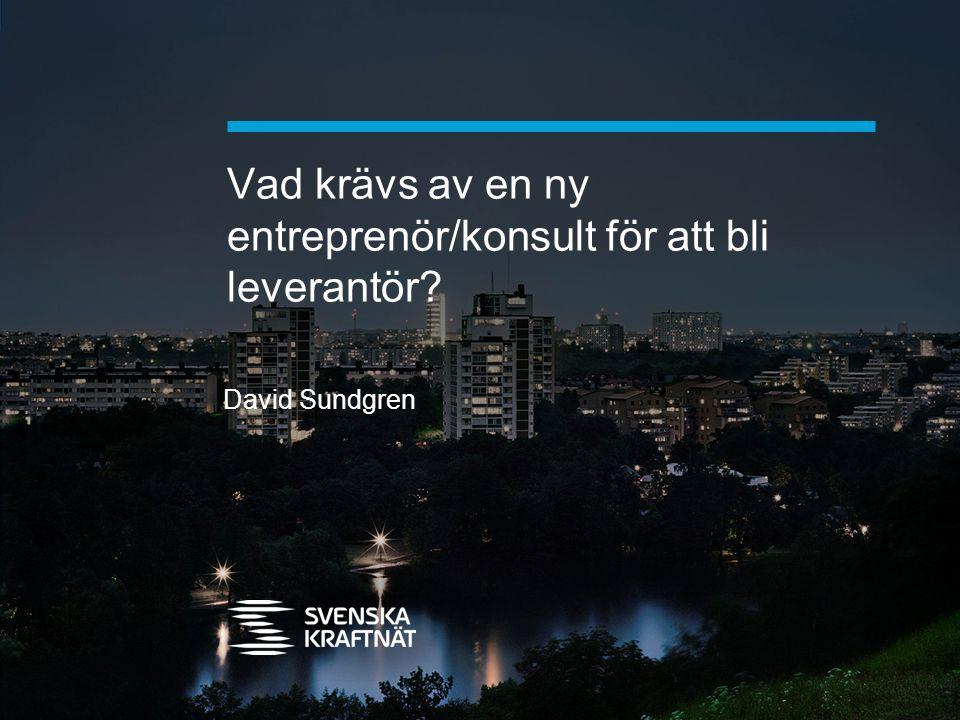 Vad krävs av en ny entreprenör/konsult för att bli leverantör? David Sundgren