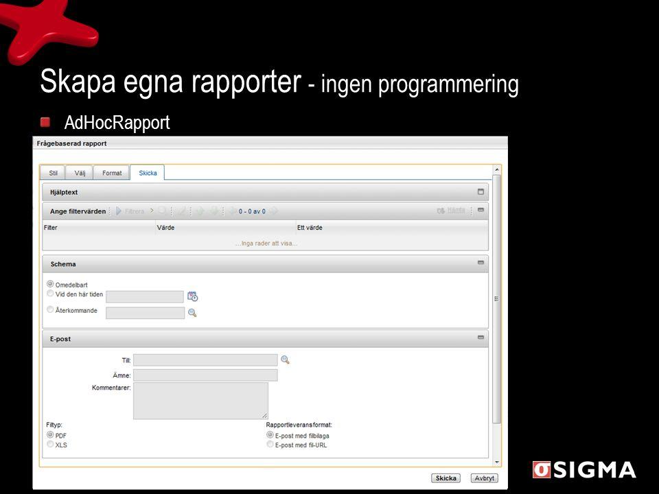 Skapa egna rapporter - ingen programmering AdHocRapport