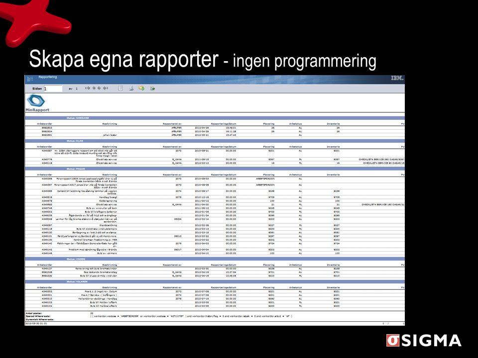 Skapa egna rapporter - ingen programmering