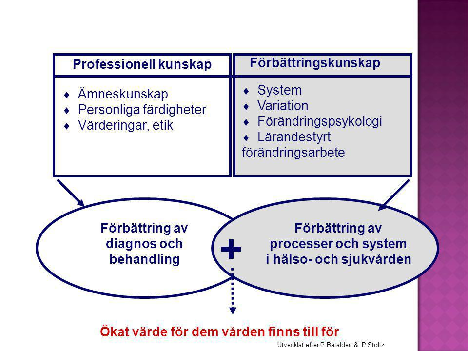 Professionell kunskap  Ämneskunskap  Personliga färdigheter  Värderingar, etik Förbättring av diagnos och behandling Förbättring av processer och system i hälso- och sjukvården + Ökat värde för dem vården finns till för Utvecklat efter P Batalden & P Stoltz Förbättringskunskap  System  Variation  Förändringspsykologi  Lärandestyrt förändringsarbete