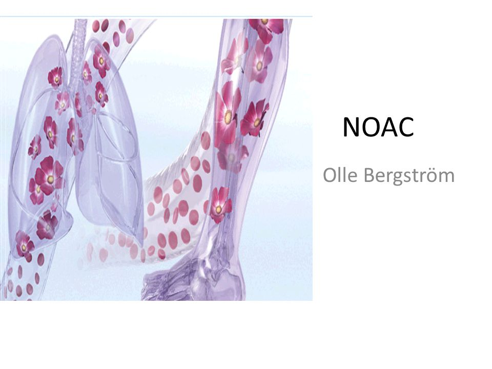 NOAC Olle Bergström