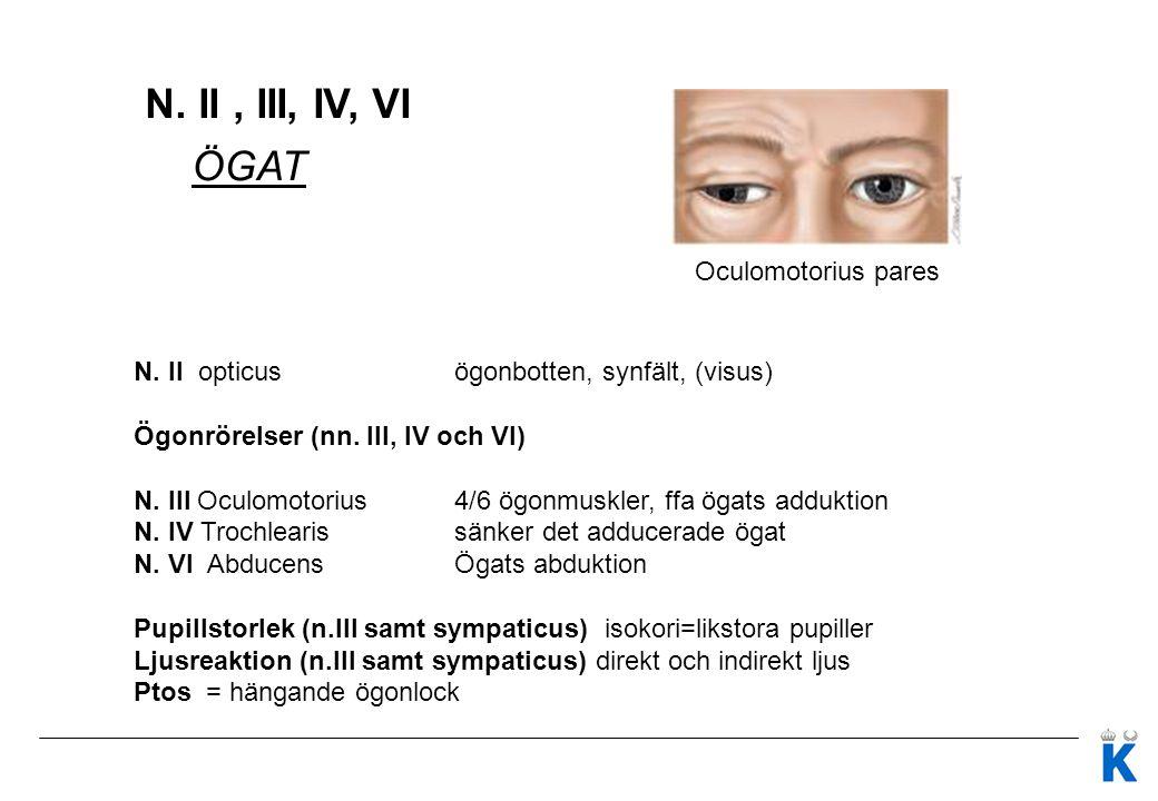N.V, VII ANSIKTET N VII N. Facialis Funktion: Ansiktsmotorik (smak främre delen av tungan) N.