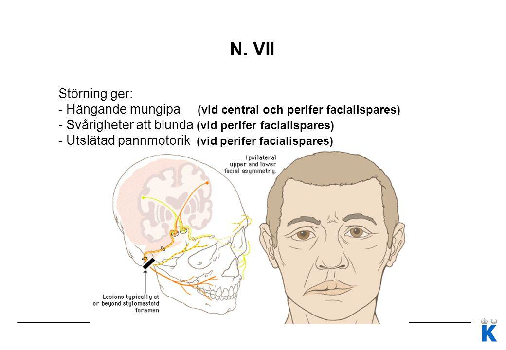Rutinnervstatus UNDER SAMTALET Högre cerebrala funktioner 1.Påverkan på talet (dysartri, dysfasi) 2.Vb enkel screening avseende orientering, minne, spatial funktion, uppmärksamhetsstörning Observera 3.