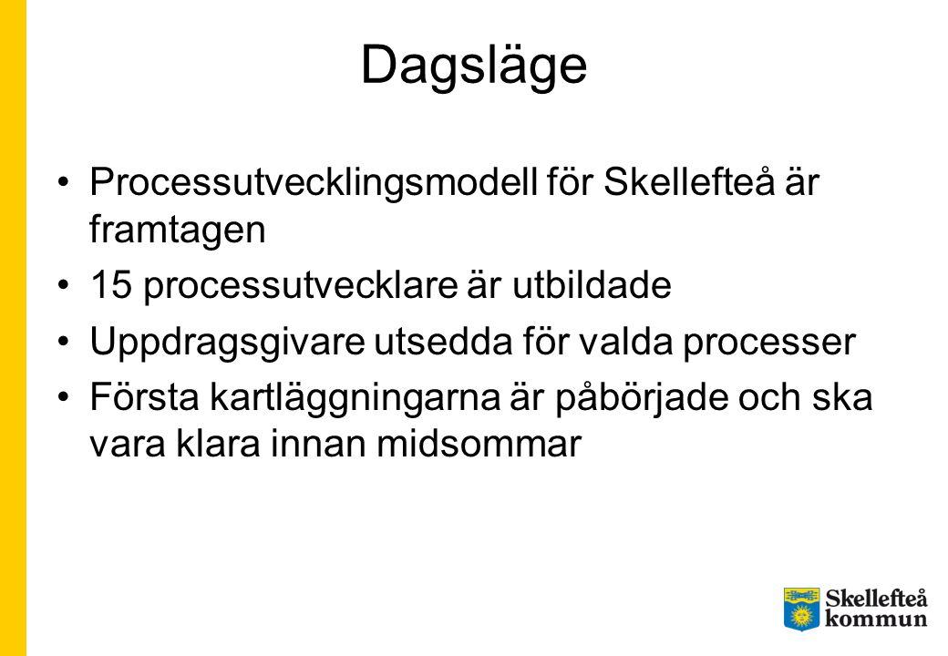 Dagsläge Processutvecklingsmodell för Skellefteå är framtagen 15 processutvecklare är utbildade Uppdragsgivare utsedda för valda processer Första kart