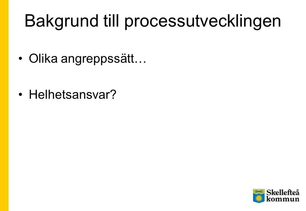 Bakgrund till processutvecklingen Olika angreppssätt… Helhetsansvar?