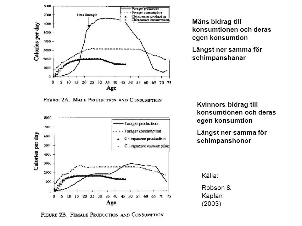 Källa: Robson & Kaplan (2003) Mäns bidrag till konsumtionen och deras egen konsumtion Längst ner samma för schimpanshanar Kvinnors bidrag till konsumt