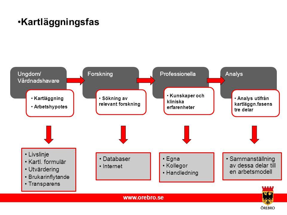 www.orebro.se Kartläggningsfas Livslinje Kartl. formulär Utvärdering Brukarinflytande Transparens Databaser Internet Egna Kollegor Handledning Sammans
