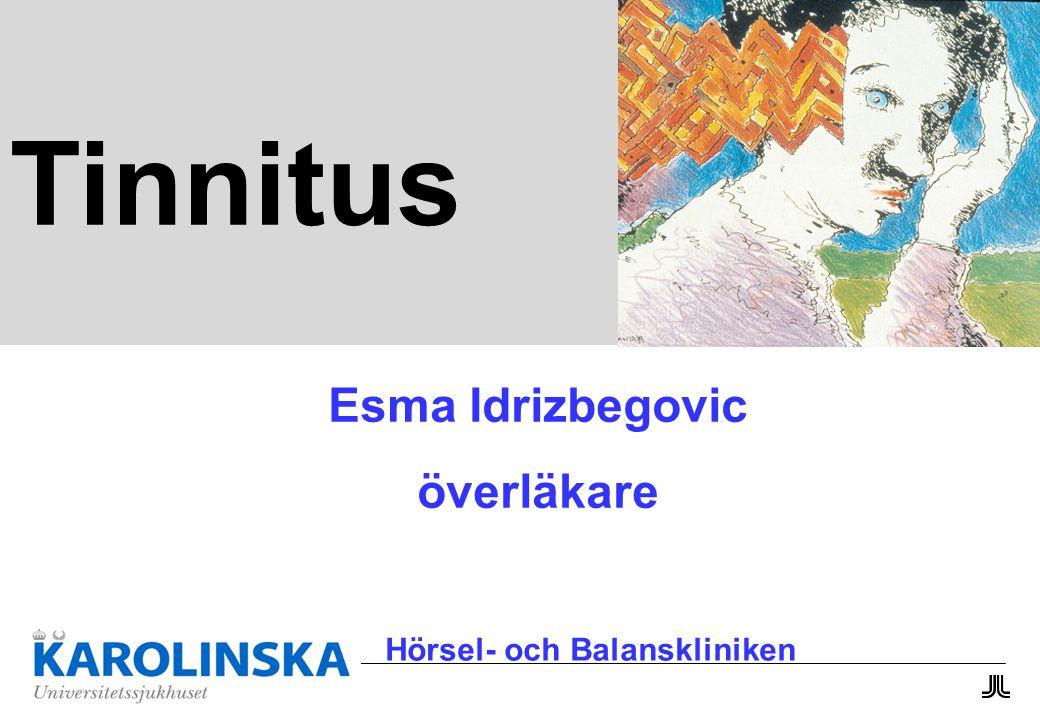 Esma Idrizbegovic överläkare Hörsel- och Balanskliniken Tinnitus