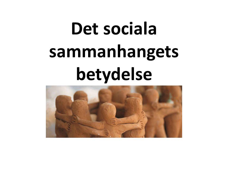 Det sociala sammanhangets betydelse