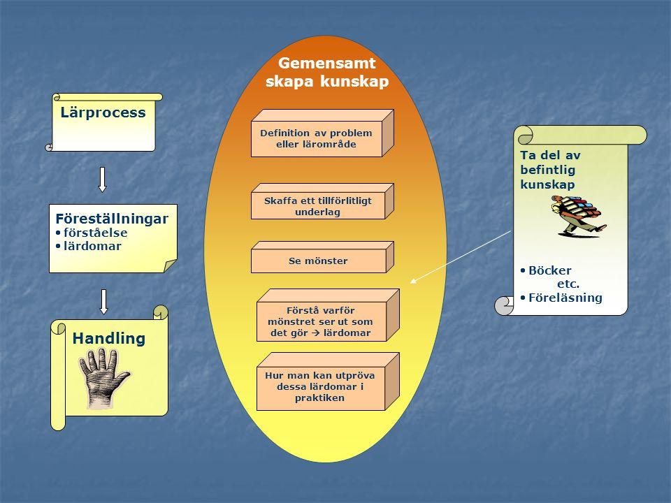 Lärprocess Handling Ta del av befintlig kunskap  Böcker etc.  Föreläsning Definition av problem eller lärområde Se mönster Förstå varför mönstret se