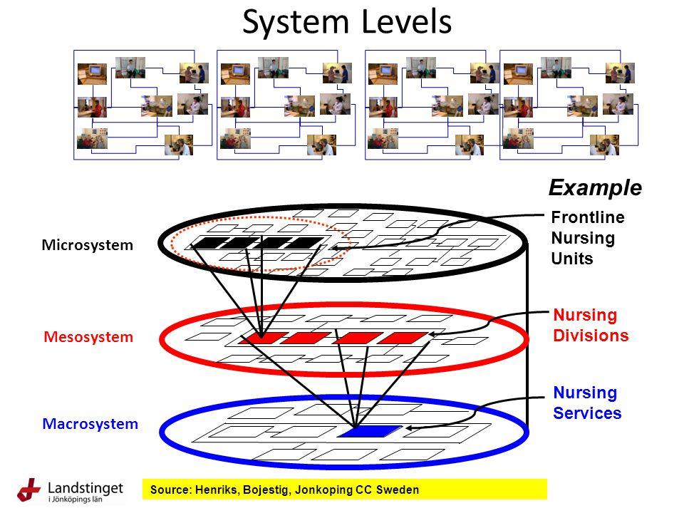 Mesosystem Microsystem Macrosystem Frontline Nursing Units Nursing Divisions Nursing Services Example System Levels Source: Henriks, Bojestig, Jonkoping CC Sweden