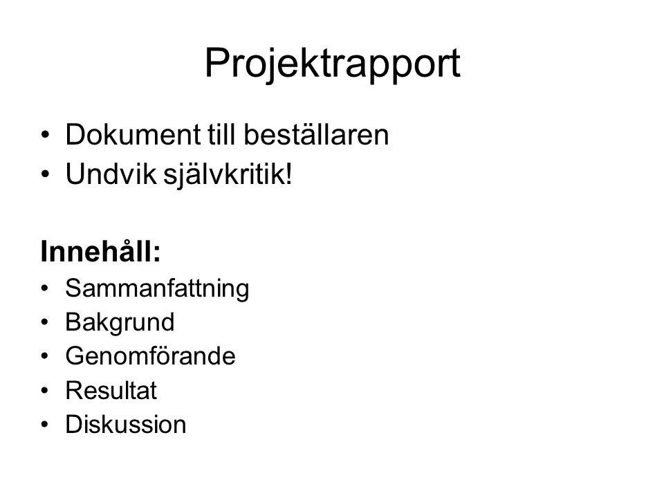 Projektrapport Dokument till beställaren Undvik självkritik! Innehåll: Sammanfattning Bakgrund Genomförande Resultat Diskussion